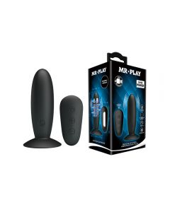 Mr. Play Vibrating Anal Plug Modern