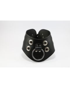 Leather Collar with O ring
